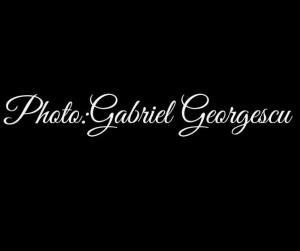 Gianni Sapone Collezione 2012-2013 Crediti